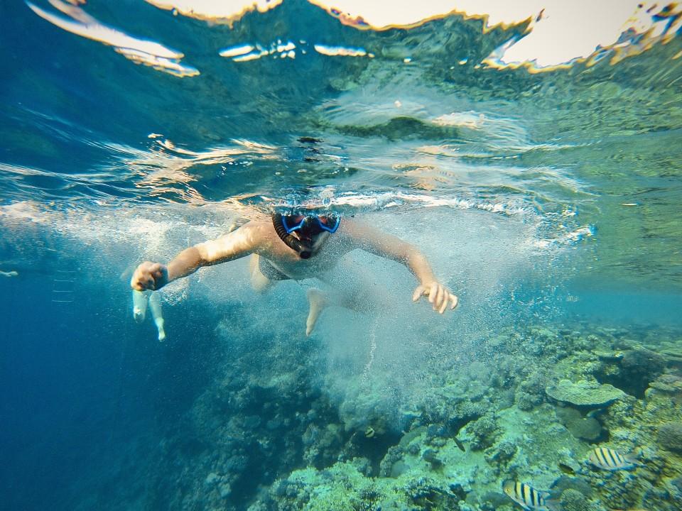 Schnorcheln im Roten Meer vor Ägypten